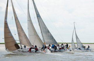 Schelderegatta verovert de Antwerpen